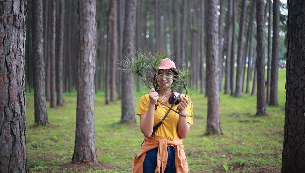 شیره و صمغ درختان را چگونه میتوان پاک کرد؟